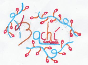 Logo_Karima
